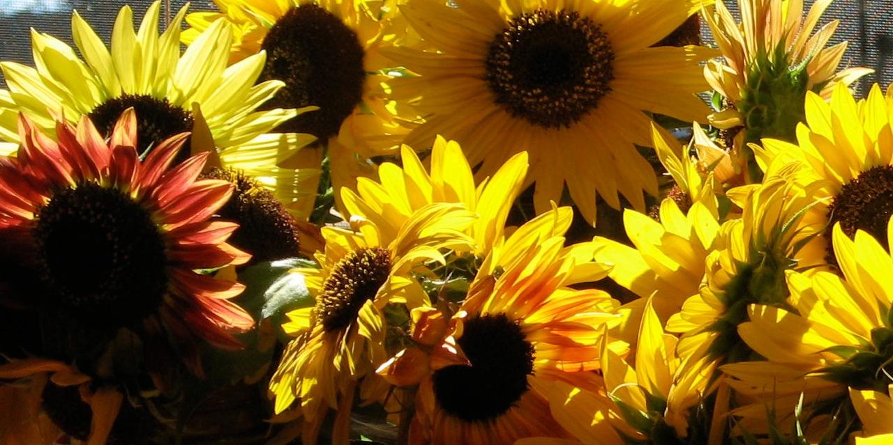 Artful Floral Arrangements