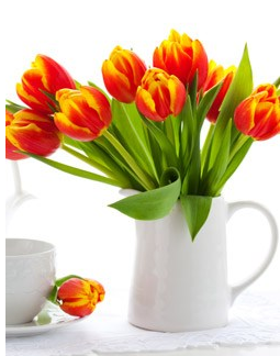 Tulips from OrganicBouquet.com